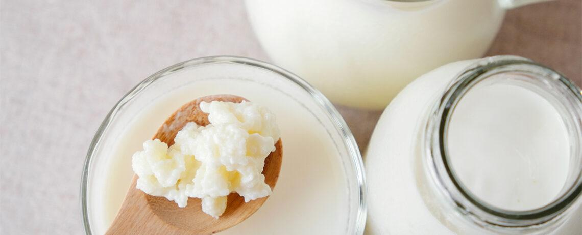 Differenza tra kefir e yogurt: cosa distingue questi due derivati del latte fermentato?